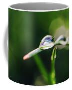 Dew Drop On Spring Grass Coffee Mug