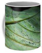 Dew Droplets Of Nature Coffee Mug