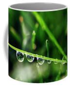 Dew Drops On Blade Of Grass Coffee Mug