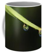 Dew Drops On Leaf Coffee Mug