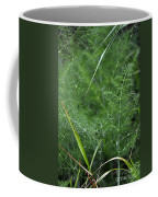 Dew On The Ferns Coffee Mug