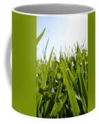 Dewdrops On New Wheat Coffee Mug