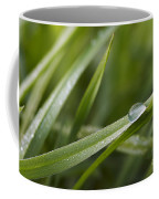 Dewy Drop On The Grass Coffee Mug