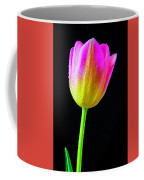 Dewy Pink Yellow Tulip Coffee Mug