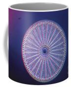 Diatom - Arachnoidiscus Ehrenberi Coffee Mug