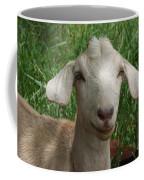 Did You Bring Lunch Coffee Mug