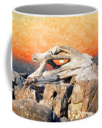 Diftwood Sunset Coffee Mug