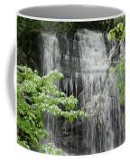 Dill Falls Coffee Mug