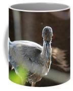 Ding Darling - Juvenile Black-crowned Night Heron Looking At You Coffee Mug
