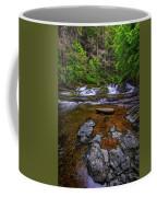 Dingmans Creek Coffee Mug