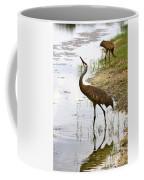 Dip In The Pond Coffee Mug