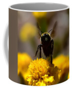 Disappearing Wings Coffee Mug