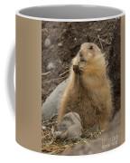 Discovery Bay-nov-162 Coffee Mug