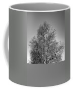 Discovery Park No.1 Coffee Mug