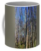 Discovery Park No.3 Coffee Mug