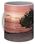 Divi Divi Aruba Coffee Mug
