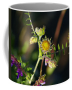Divine Natural Creations Coffee Mug