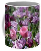 Divine Tulip Display Coffee Mug