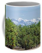 Dm6850-e Orange Grove And The Sierra Nevada Ca Coffee Mug