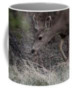 Doe Carefully Grazing In Tombstone Coffee Mug