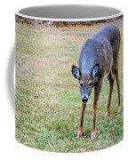 Doe Stomp Coffee Mug