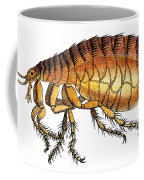 Dog Flea, Illustration Coffee Mug