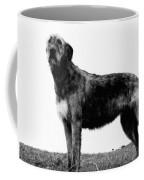 Dog: Irish Wolfhound Coffee Mug