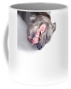 Dog Rolling Over And Playing Dead Coffee Mug