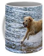 Dog Running On Shallow Lake Shore Coffee Mug