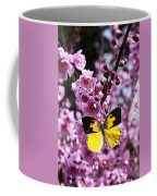 Dogface Butterfly In Plum Tree Coffee Mug