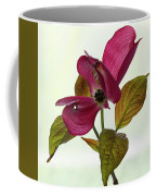 Dogwood Ballet 1 Coffee Mug