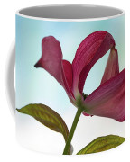 Dogwood Ballet 3 Coffee Mug
