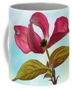 Dogwood Ballet 4 Coffee Mug