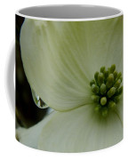 Dogwood Bloom - Closeup Coffee Mug
