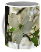 Dogwood Bloom Coffee Mug
