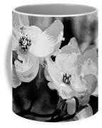 Dogwood Blossoms - Black And White Coffee Mug