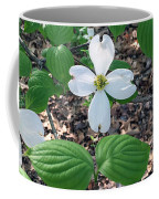 Dogwood Blossoms Coffee Mug