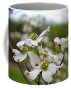 Dogwood Blossoms Coffee Mug