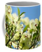 Dogwood Flowers Art Prints Canvas White Dogwood Tree Blue Sky Coffee Mug