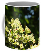 Dogwood Flowers White Dogwood Tree Flowers Art Prints Cards Baslee Troutman Coffee Mug