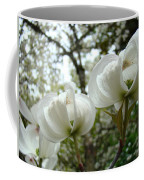 Dogwood Flowers White Dogwood Trees Blossoming 8 Art Prints Baslee Troutman Coffee Mug
