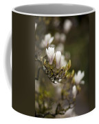 Dogwood Gathering Coffee Mug