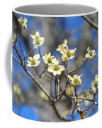 Dogwood In Bloom Coffee Mug