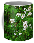Dogwood In Bloom Coffee Mug