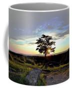 Dogwood On Little Round Top Coffee Mug