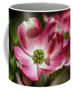 Dogwood Spring Coffee Mug