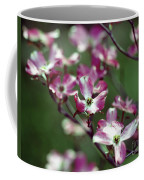 Dogwood Tree Coffee Mug