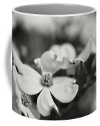 Dogwoods In Black And White Coffee Mug