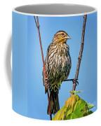 Doing The Spilts Coffee Mug