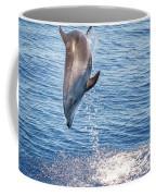 Dolphin Jump Coffee Mug